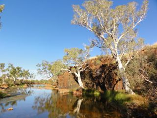 Groundwater dependent ecosystem (GDE) monitoring : Image 1