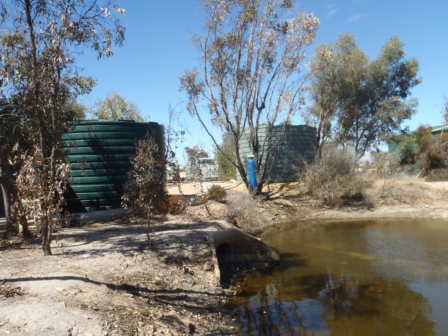 Contaminated Site Investigation & Remediation - Leeming Road, Grass Valley : Image 2