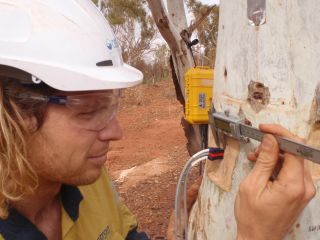 Instrumented Monitoring Program in Coolibah Woodland : Image 1