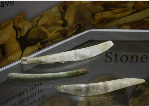Animal bone tools used at Great Orme copper mine
